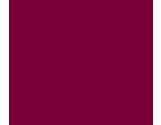 Logo lvvd